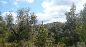 Detalle de Casa y olivar en Fornoles con bodega por 19.000€