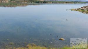 Foto de Finca junto al gran embalse en Caspe en venta con muy tranquilo