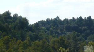 Vendemos Gran finca en Peñarroya de Tastavins con privacidad y tranquilidad por 330.000€