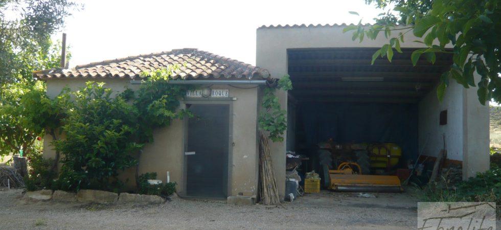 P1150947